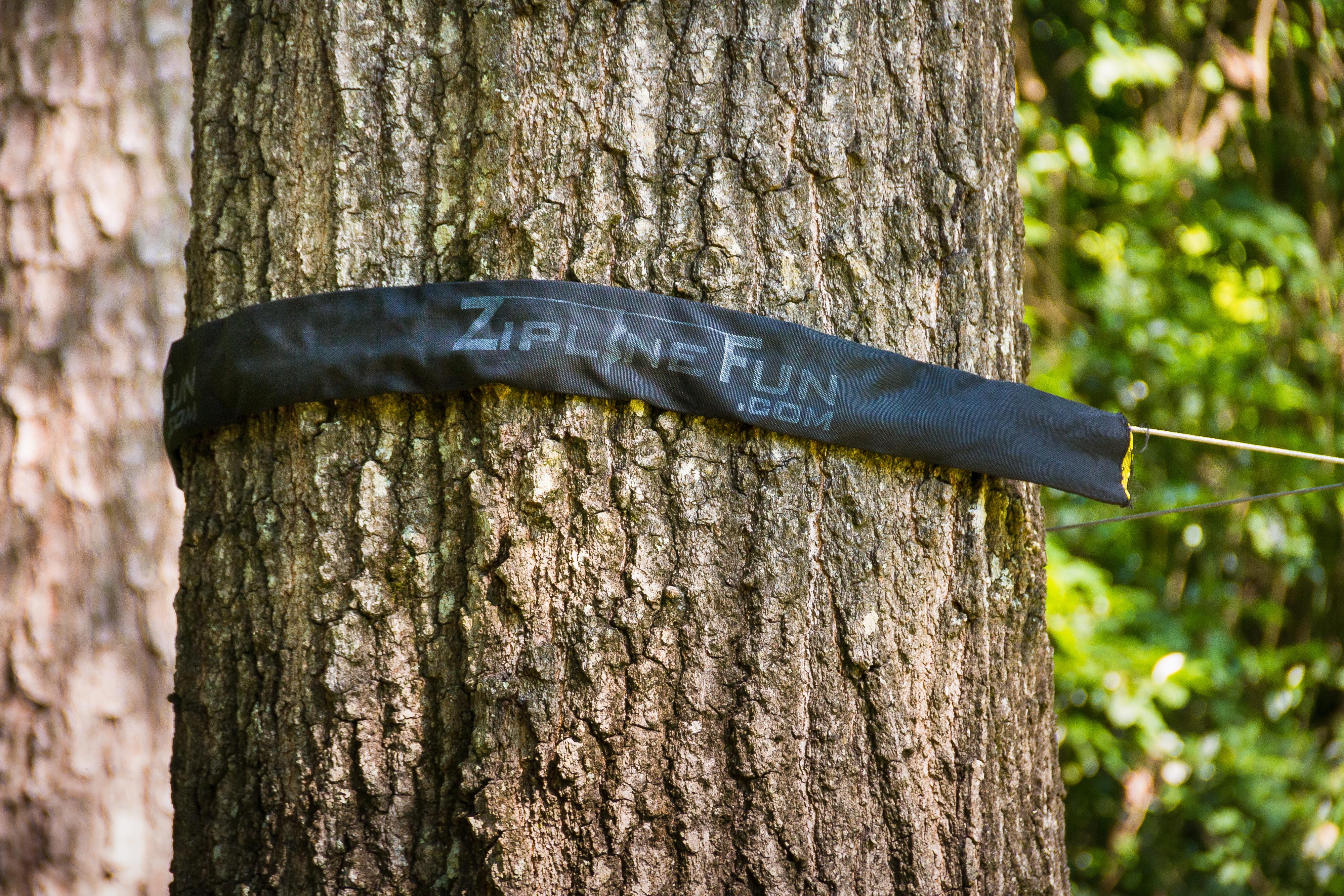 tree-protector-installed.jpg